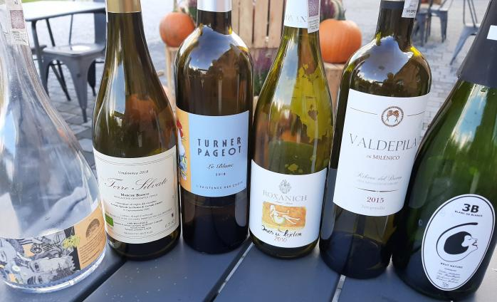 Strings of the Universe - what are biodynamic wines (wine tasting)